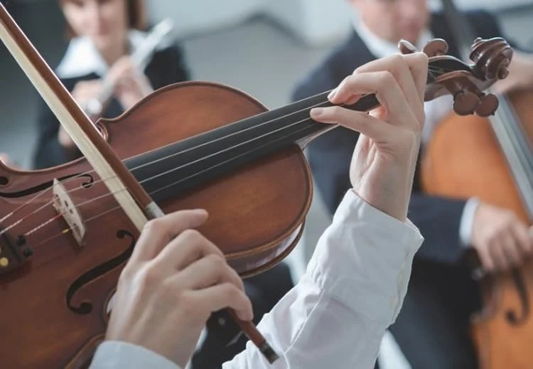 Image shows a violin.