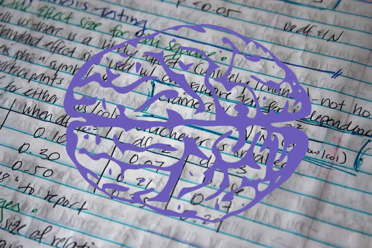 Image shows a brain and equations.