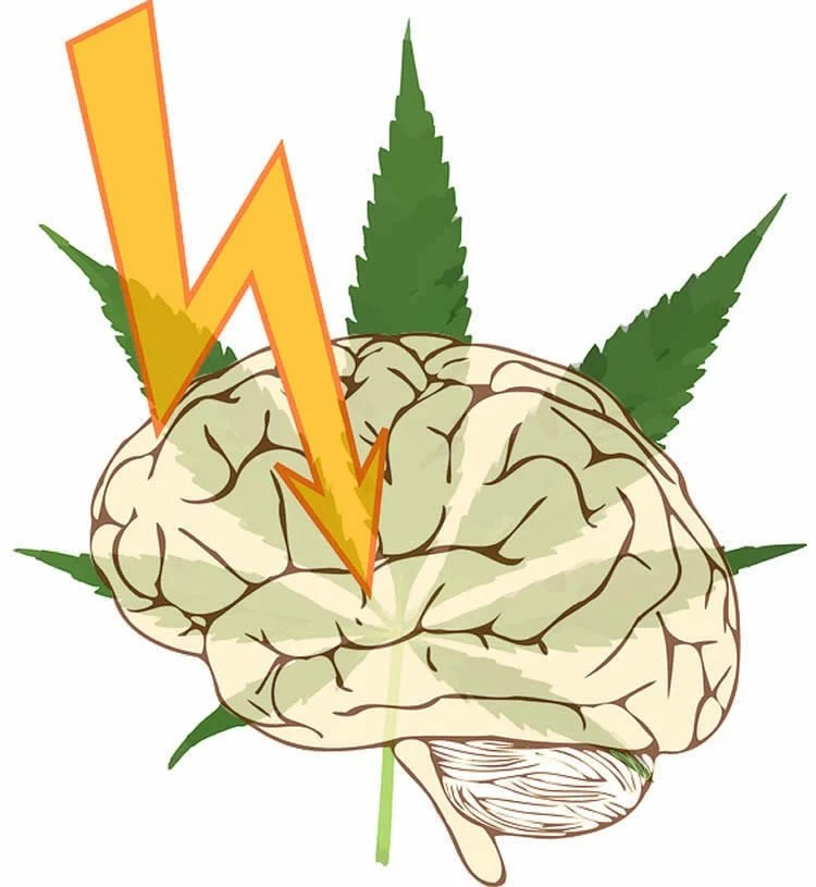 Image shows a brain and cannabis leaf.