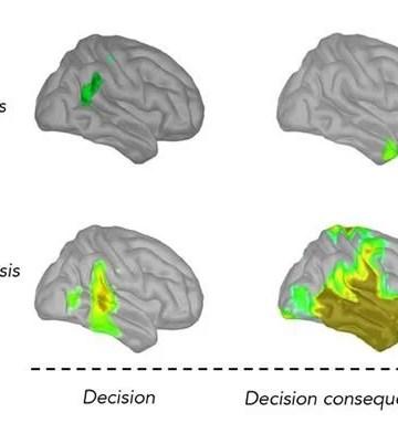 Neuroscience News Brain Psychology Ai Neurology And