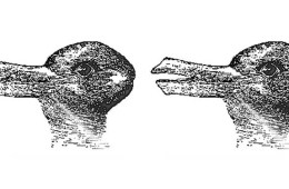 rabbit duck illusion