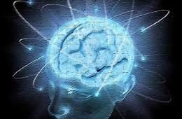 a brain with balls around it