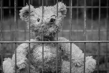 a teddy bear behind bars