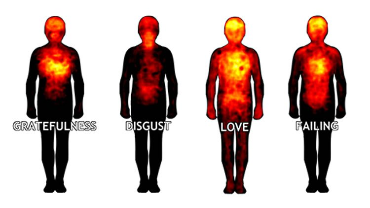 heat maps of the human body