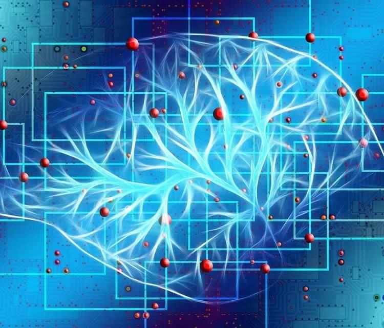 Autism Behaviors Show Unique Brain >> Autism Behaviors Show Unique Brain Network Fingerprints In Infants