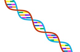 This is a brightly colored dna strand