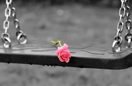 This shows a swing with a pink rose on it