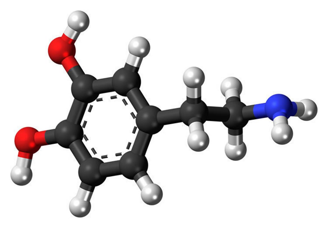 This shows a dopamine stick and ball model