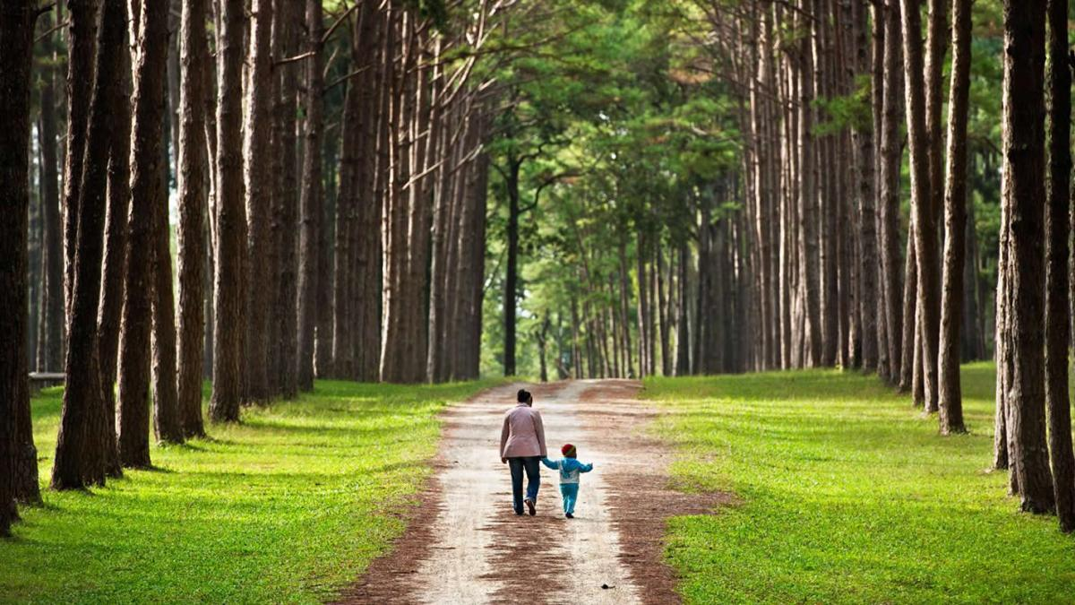 This shows a parent and child walking in the park