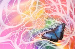 This shows a butterfly against a neuron swirly background