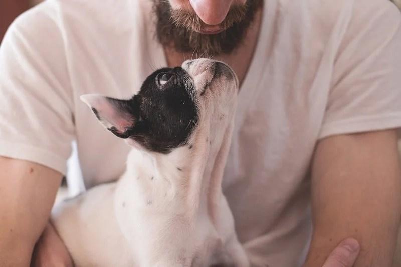 dog owner longevity neurosciencees public jpg?fit=800,533&ssl=1.'