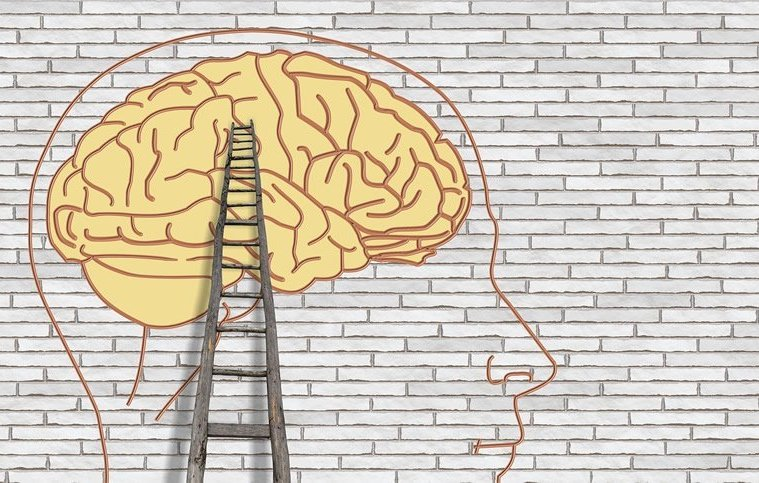 This is a drawing of a brain on a wall and a ladder