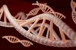 This is a drawing of DNA