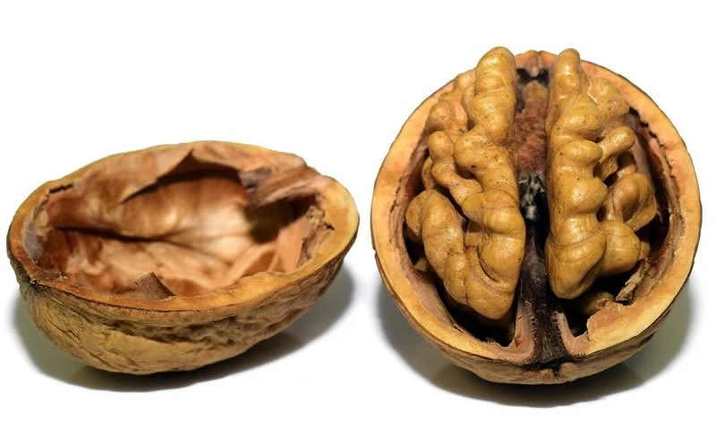This shows a walnut