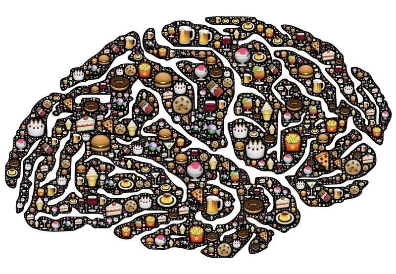 This is a drawing of food and a brain