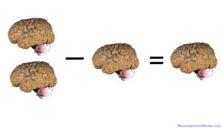 Two brains, a minus sign, one brain, an equals sign and a brain are shown.