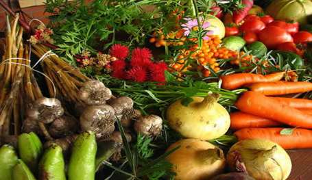 A large mix of fruits and vegetables is shown.
