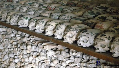 A wall of Hallstat Skulls are shown.
