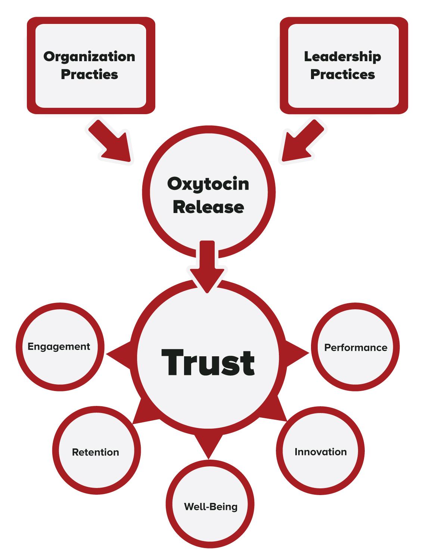 Neuroview Leadership Trust Assessment