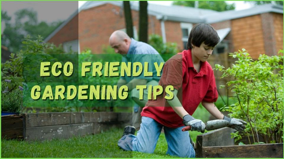 Eco friendly gardening tips with zero waste - Neutrino Burst!