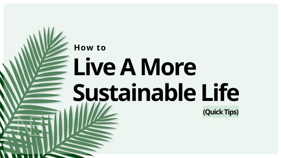 How to live a more sustainable life - Neutrino Burst