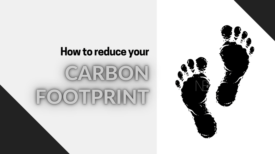 How to reduce your carbon footprint - Neutrino Burst!