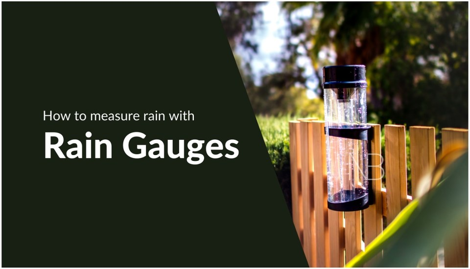 How to measure rain with rain gauges - Neutrino Burst