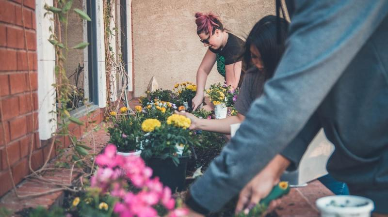 Go green with school gardening