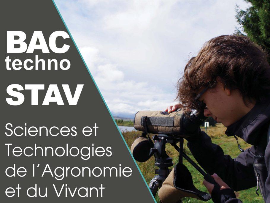 formation BAC technologique STAV