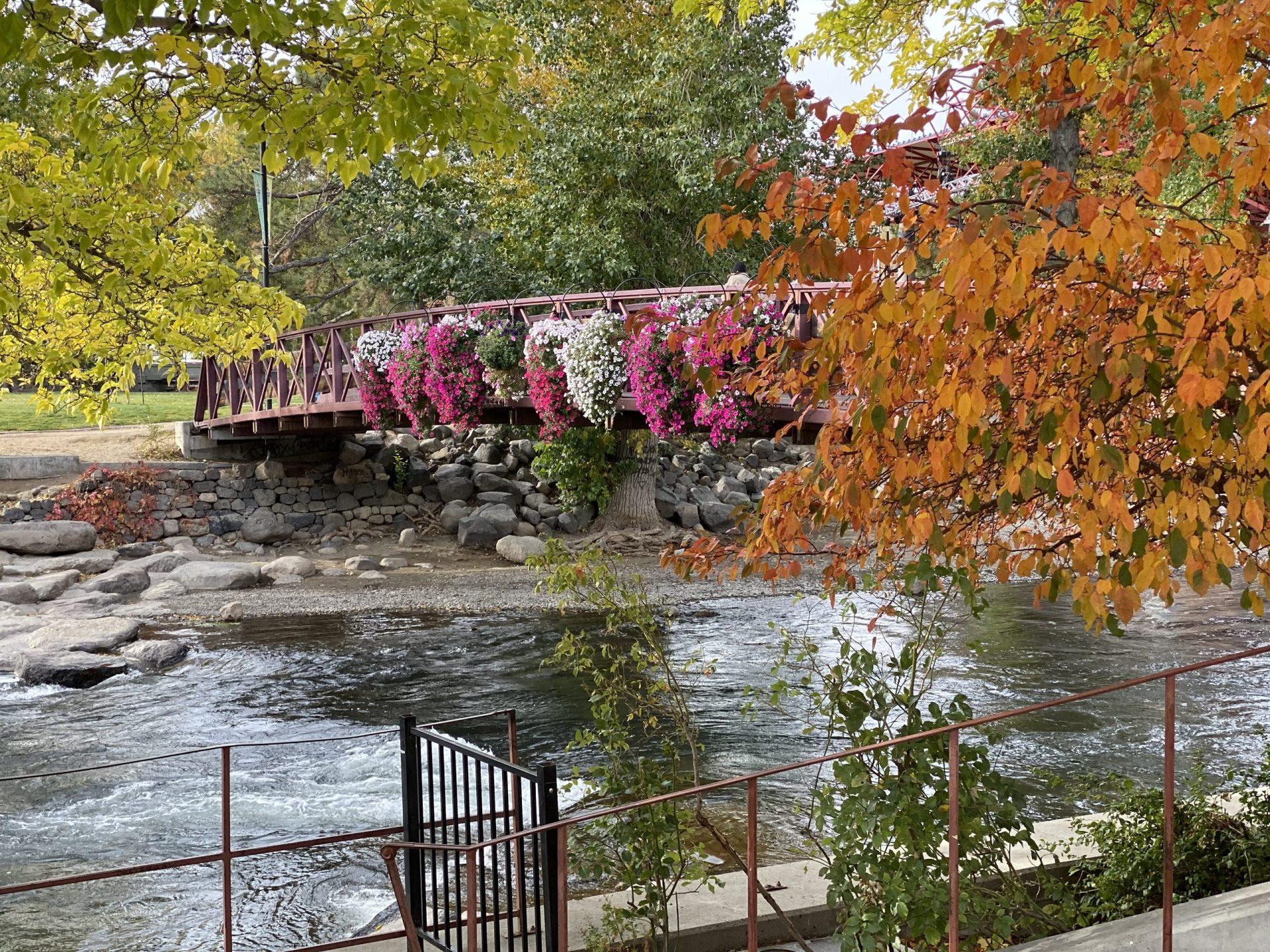 Reno's Truckee River. Image: Bob Conrad.