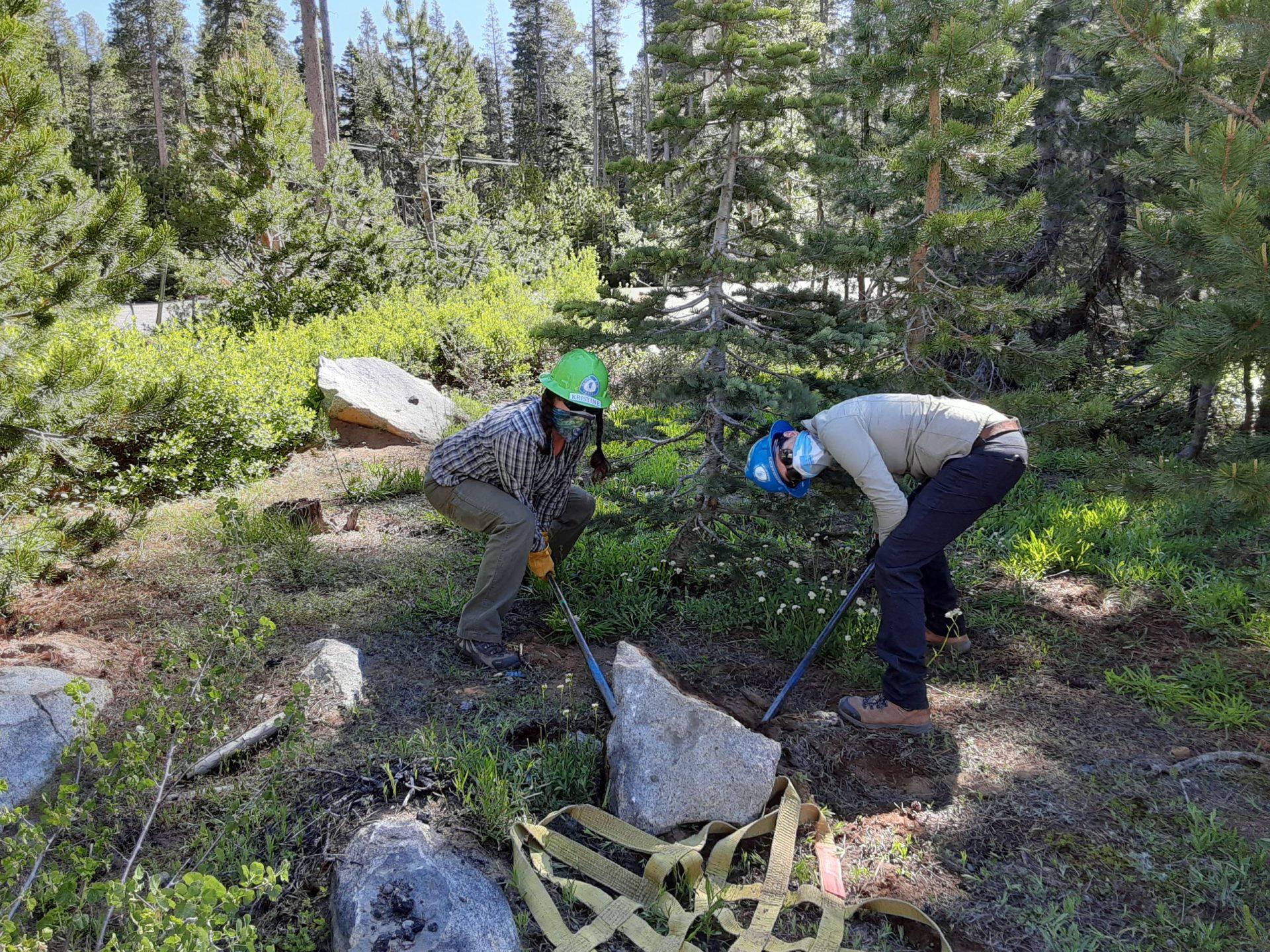 TRTA staff work on trail maintenance. Image: Morgan Steel