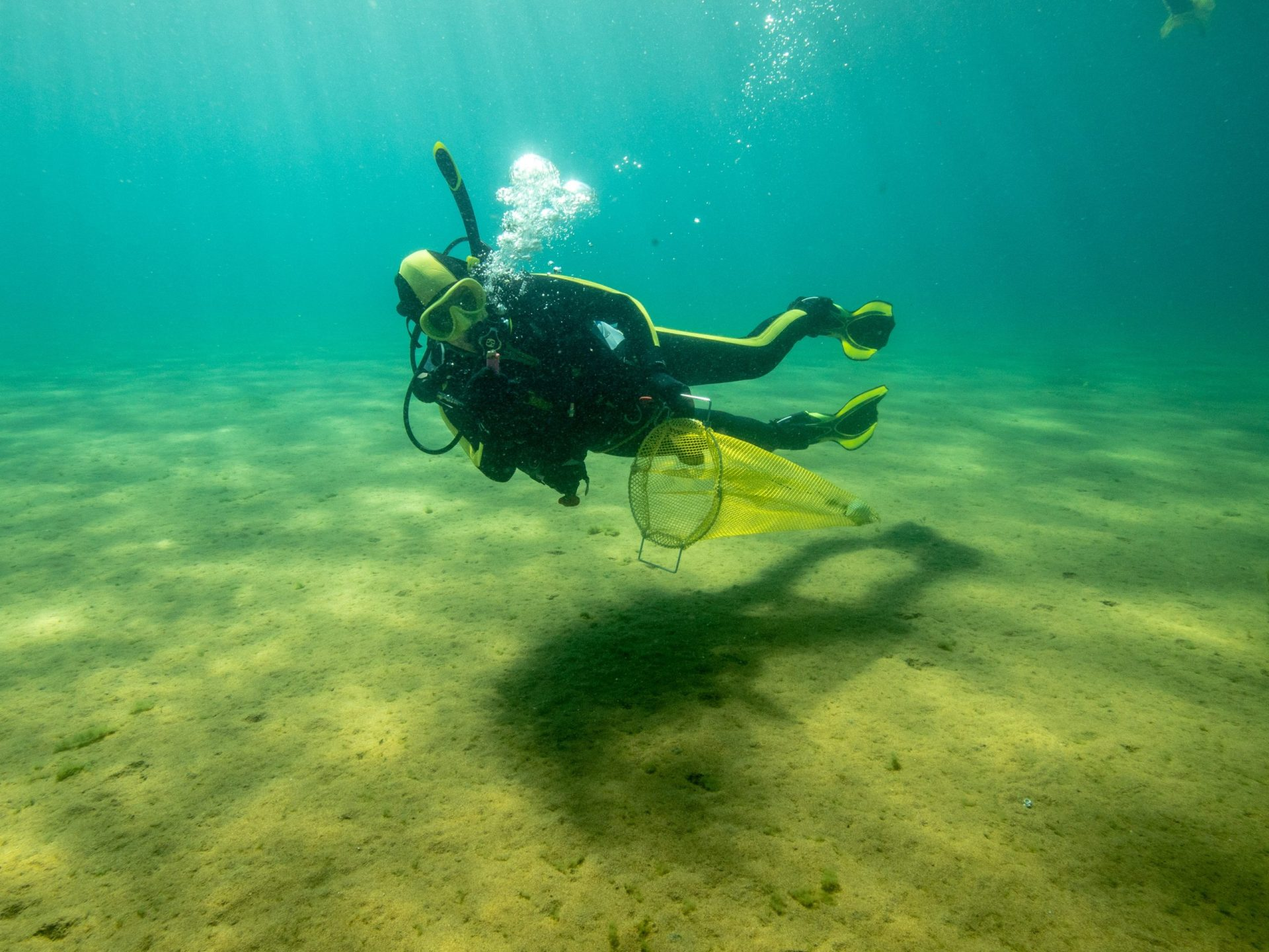 A diver from Clean Up The Lake collects underwater trash.
