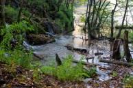 Mirnija voda
