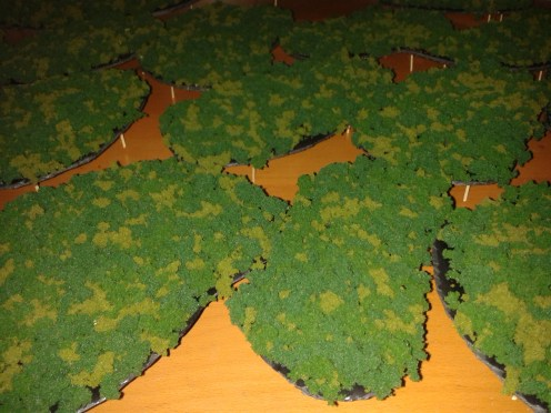 model woods for AoF (4)