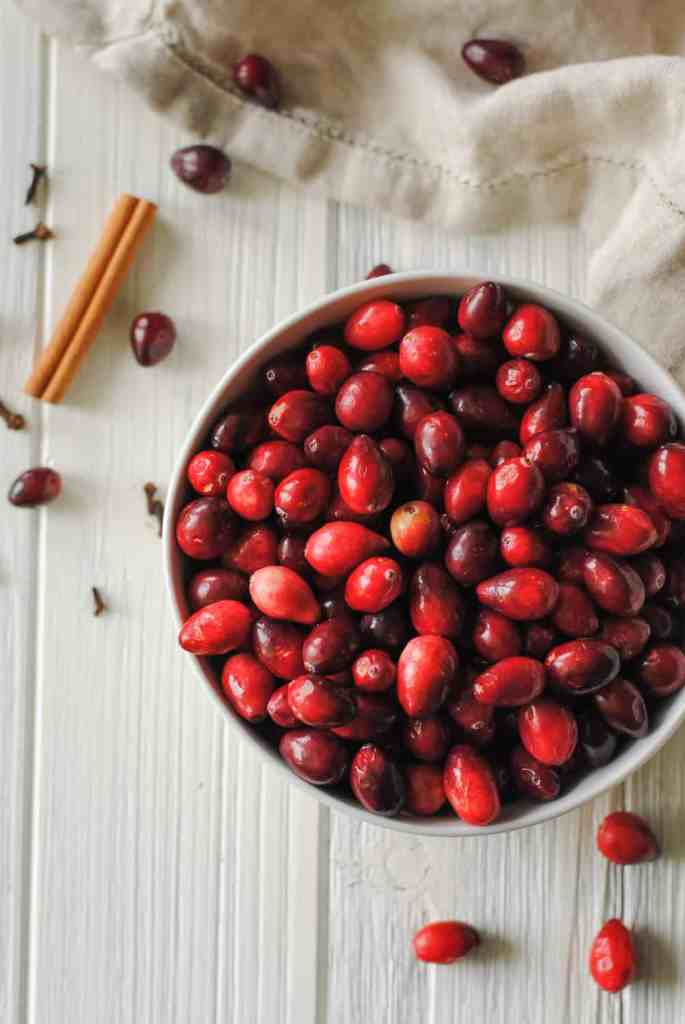Bowl of cranberries, cinnamon stick, and cloves on a white background