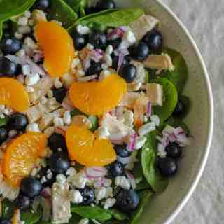 spinach salad greens with blueberries, mandarin oranges, goat cheese and red onion