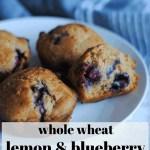 whole wheat lemon and blueberry muffins