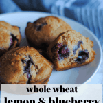 whole wheat lemon and blueberry muffins