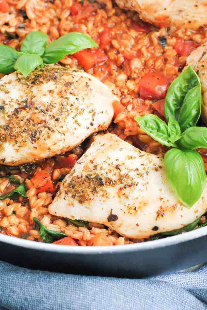 skillet with cooked farro, tomatoes, chicken and basil
