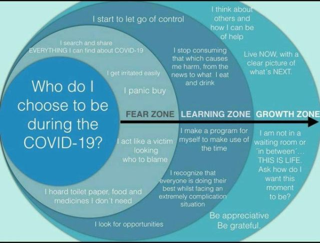 Different zones which describes our feelings during COVID-19.