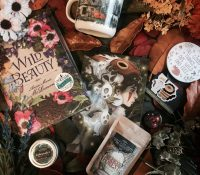 OwlCrate: October 2017 Unboxing