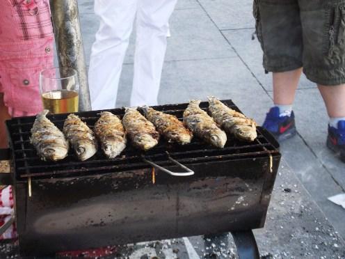 The sardines
