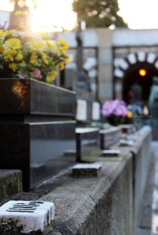 Cimitero Monumentale - Milano (5)