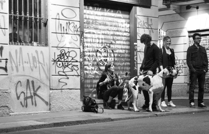 Navigli (Milan, Italy) 6 - 2014 © Thatiana Terra