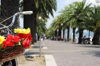 Porto Mirabello / Mirabello Port - La Spezia (Liguria, Italy) 5