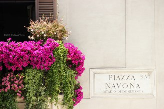 One day in Rome (Piazza Navona) - Photography 20