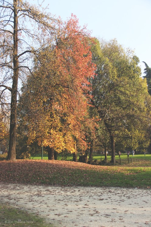Milan: Parco Sempione with love (3)