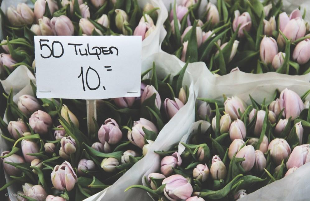 Amsterdam: Sweet details (10)