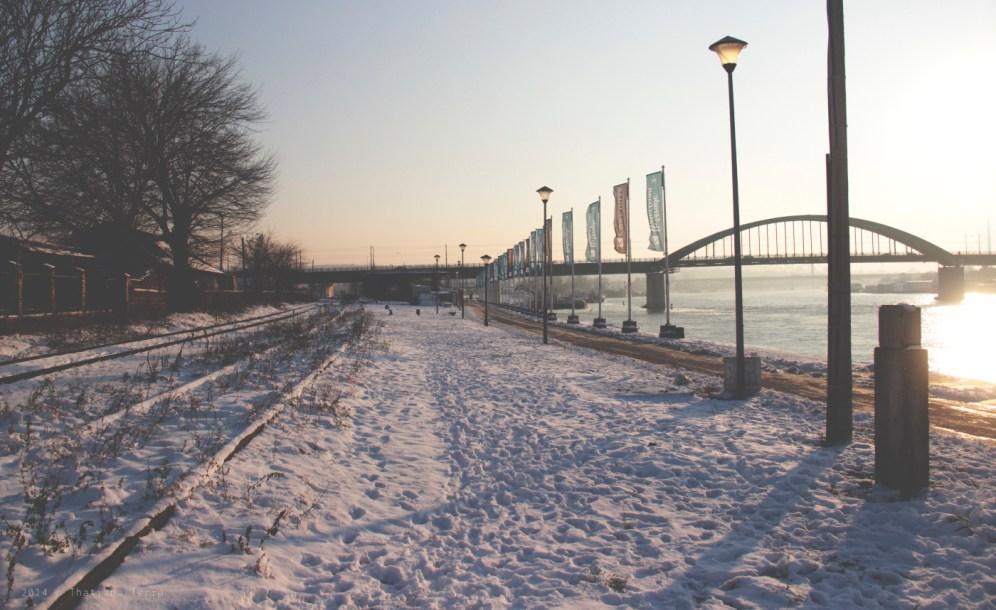 Belgrade: Sunset and friends (1)