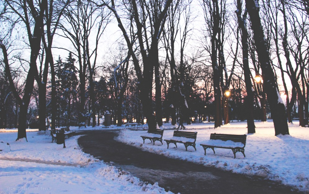 Belgrade: Sunset and friends (2)